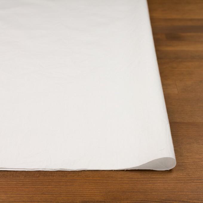 コットン×無地(オフホワイト)×ブロードワッシャー イメージ3