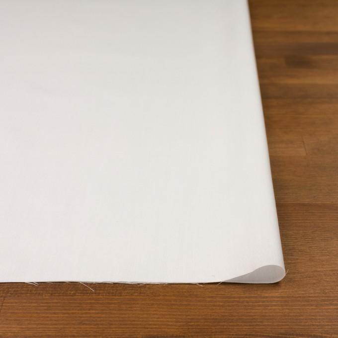 コットン×無地(オフホワイト)×オックスフォード イメージ3