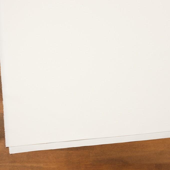 コットン×無地(ミルキーホワイト)×かわり織_イタリア製 イメージ2
