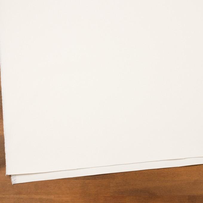 コットン×無地(ミルキーホワイト)×8号帆布 イメージ2