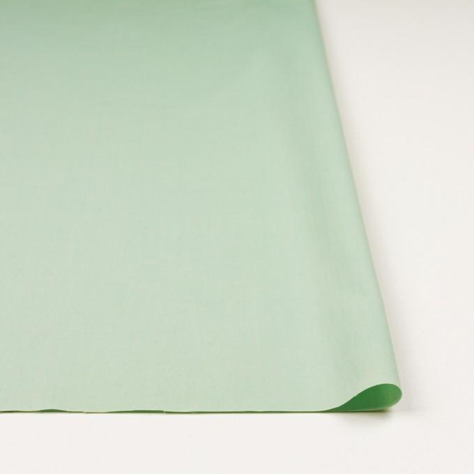 コットン×無地(アイスグリーン)×ブロード_全2色_イタリア製 イメージ3
