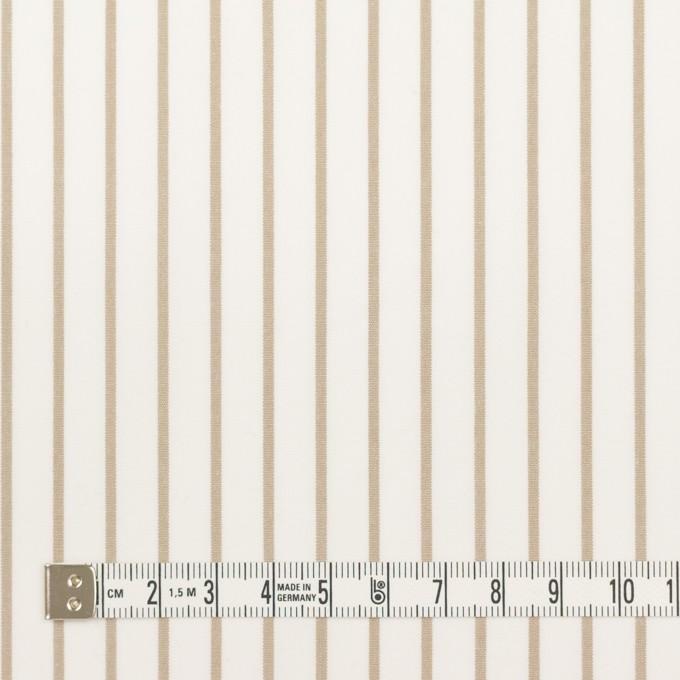 コットン×ストライプ(カーキベージュ)×ポプリン_全2色 イメージ4