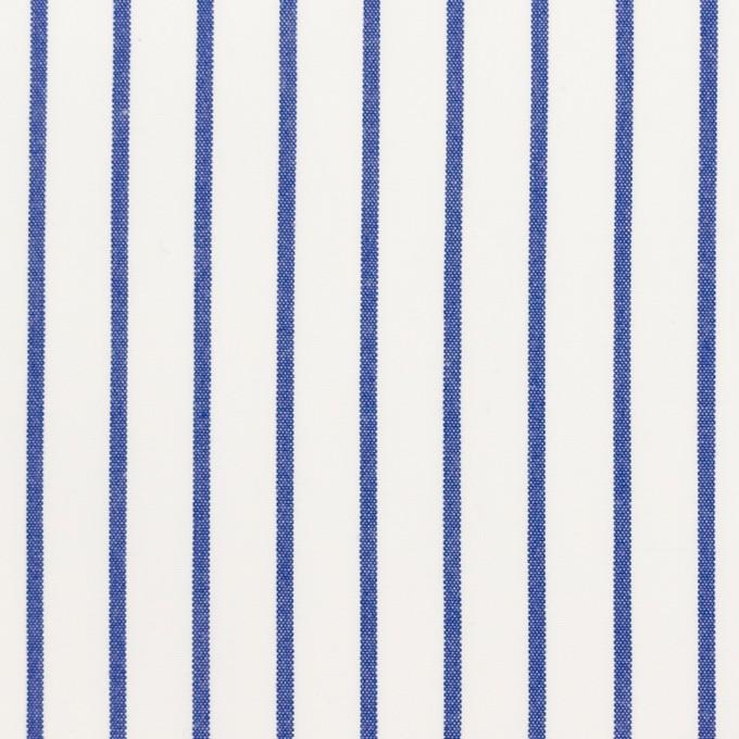 コットン×ストライプ(ブルー)×ポプリン_全2色 イメージ1