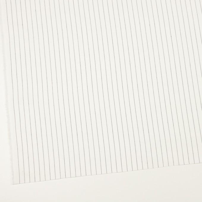 コットン×ストライプ(オフホワイト)×サージ イメージ2