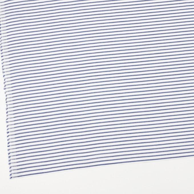 コットン×ボーダー(ブルー)×かわり織 イメージ2