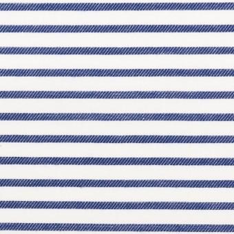 コットン×ボーダー(ブルー)×かわり織