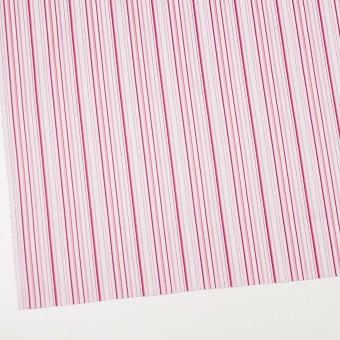 コットン×ストライプ(ピンク)×ブロードジャガード サムネイル2