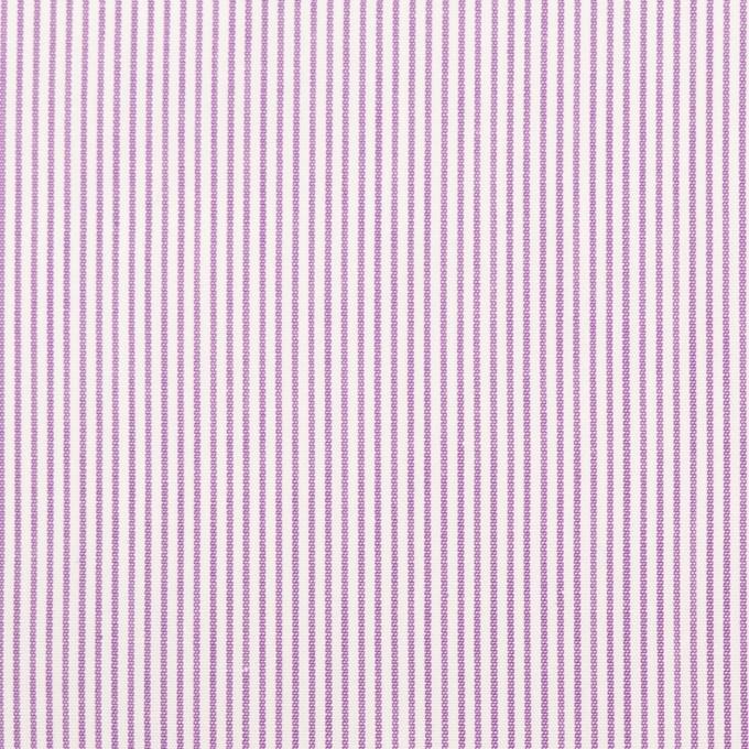 コットン×ストライプ(モーブ)×ブロード イメージ1