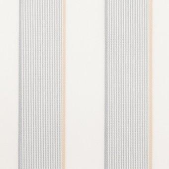 コットン×ストライプ(ライトグレー&ベージュ)×ブロードジャガード サムネイル1
