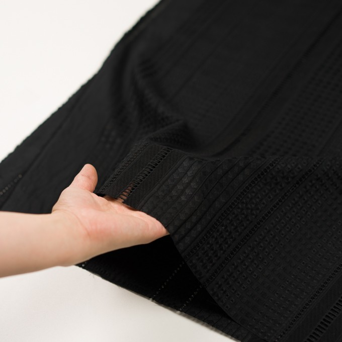 コットン×ストライプ(ブラック)×ローン刺繍 イメージ5