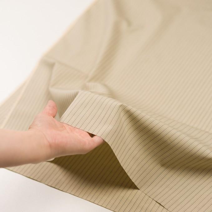 コットン×ストライプ(キナリ、カーキ&ブラック)×かわり織 イメージ5