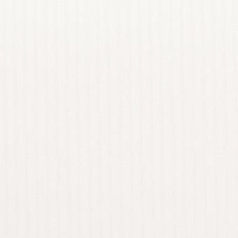 コットン×ストライプ(オフホワイト)×ブロード_全2色 サムネイル1