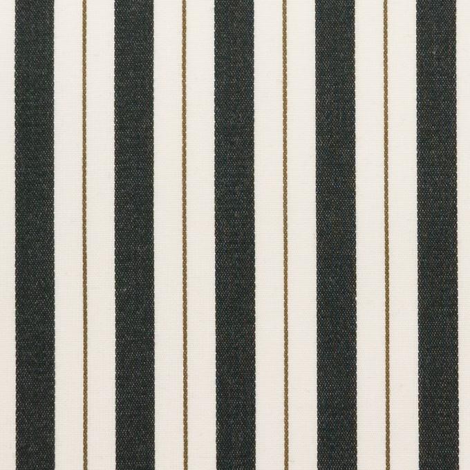 コットン×ストライプ(クリーム&ブラック)×ブロードジャガード イメージ1