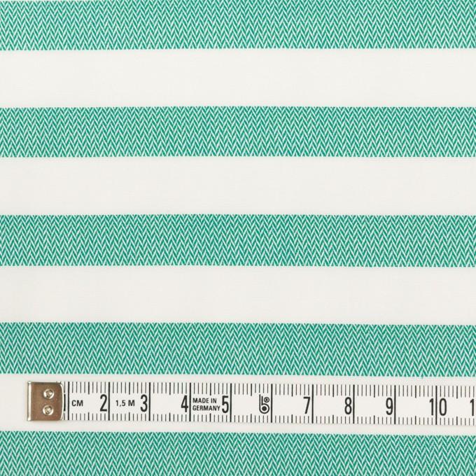 コットン×ボーダー(エメラルドグリーン)×ブロード&ヘリンボーン イメージ4