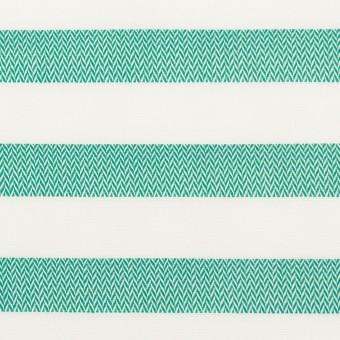 コットン×ボーダー(エメラルドグリーン)×ブロード&ヘリンボーン