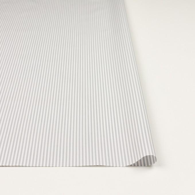 コットン×ストライプ(ライトグレー)×ブロード イメージ3