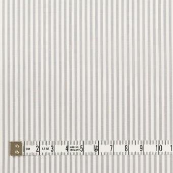 コットン×ストライプ(ライトグレー)×ブロード サムネイル4