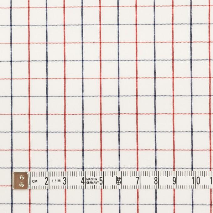 コットン×チェック(トリコロール)×ブロード イメージ4