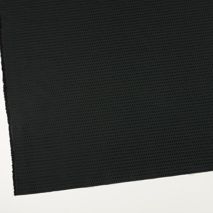 コットン×ドット(ブラック)×ローンドビー イメージ2