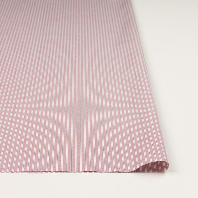 コットン×ストライプ(ローズ)×かわり織 イメージ3