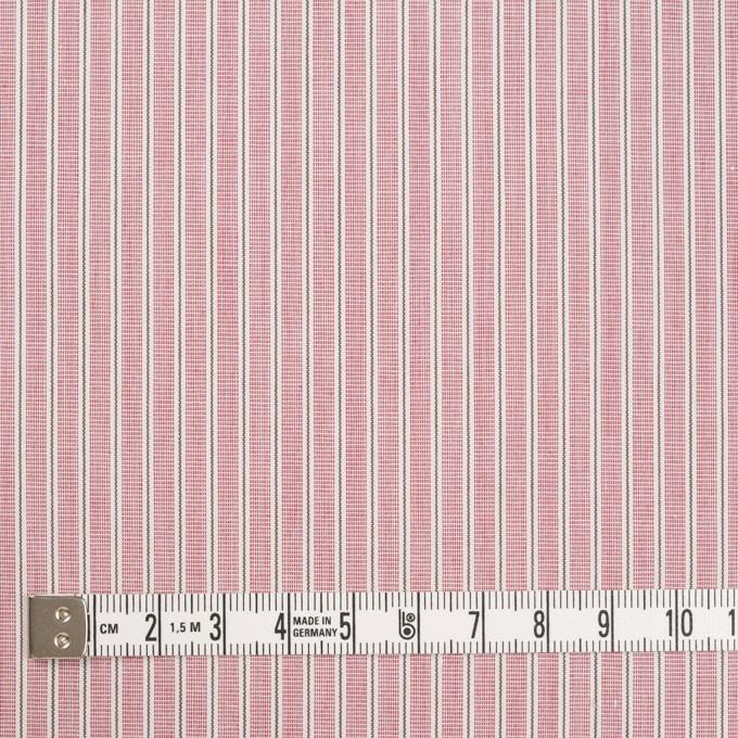 コットン×ストライプ(ローズ)×かわり織 イメージ4