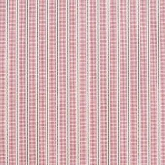 コットン×ストライプ(ローズ)×かわり織 サムネイル1