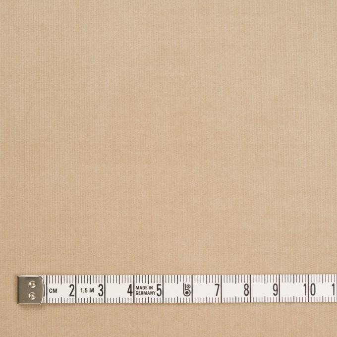 コットン&ポリウレタン×無地(ベージュ)×細コーデュロイ・ストレッチ_全5色 イメージ4