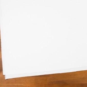 コットン×無地(ホワイト)×オックスフォード_全2色 サムネイル2