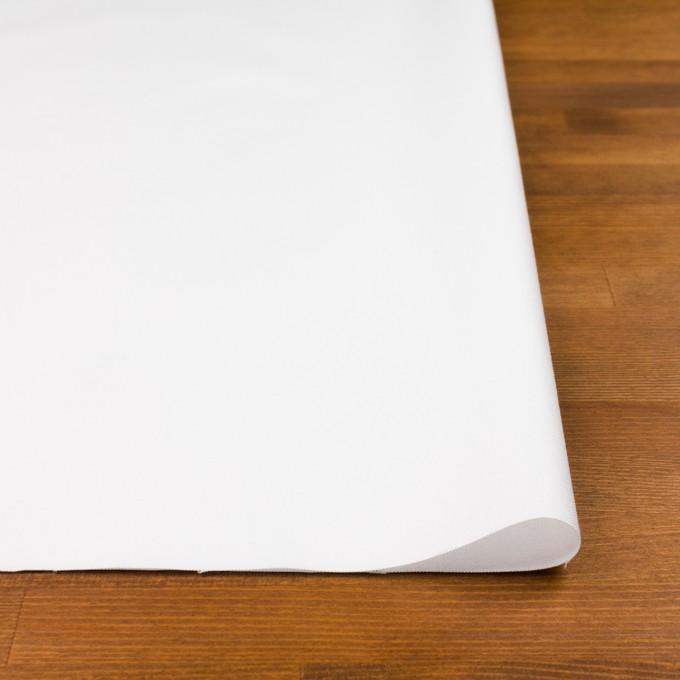 コットン×無地(ホワイト)×オックスフォード_全2色 イメージ3