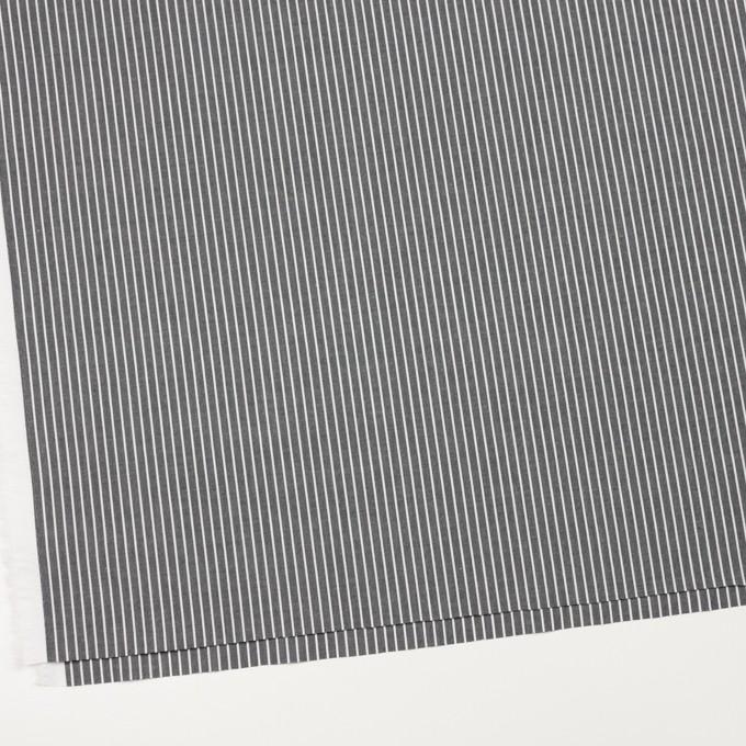コットン×ストライプ(チャコールグレー)×ブロード イメージ2