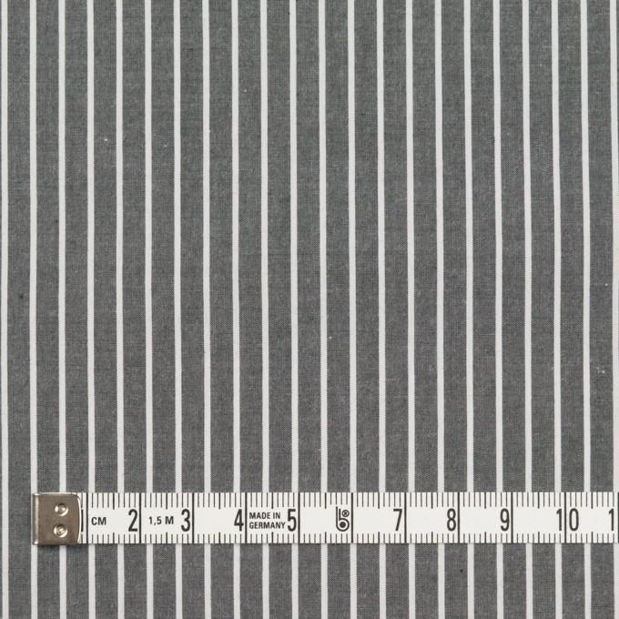 コットン×ストライプ(チャコールグレー)×ブロード イメージ4