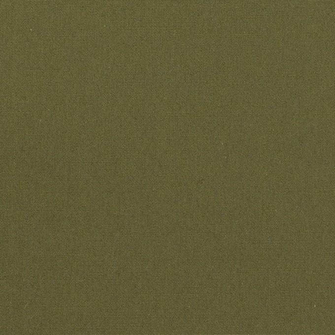 コットン×無地(カーキグリーン)×ポプリン イメージ1