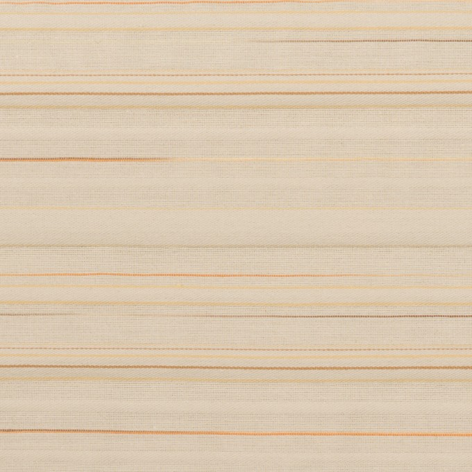 コットン&ナイロン混×ボーダー(ベージュ)×ヨコタック イメージ1