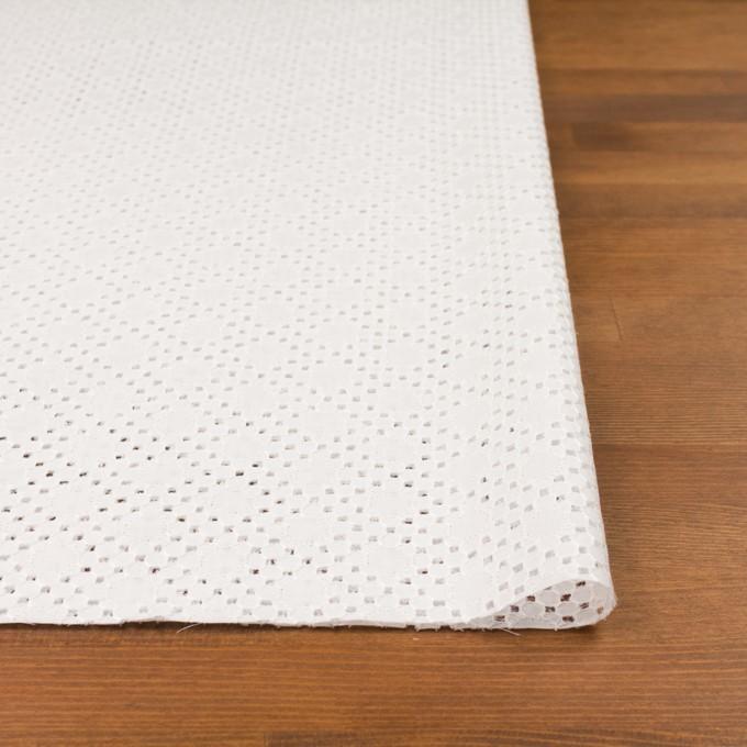 コットン×サークル(オフホワイト)×ローン刺繍_全3色 イメージ3