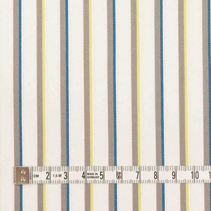 コットン&ポリウレタン×ストライプ(ホワイト&アッシュグレー)×ブロードジャガード イメージ4