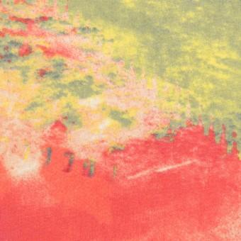 ポリエステル×ペイント(マルチ)×ジョーゼット サムネイル1
