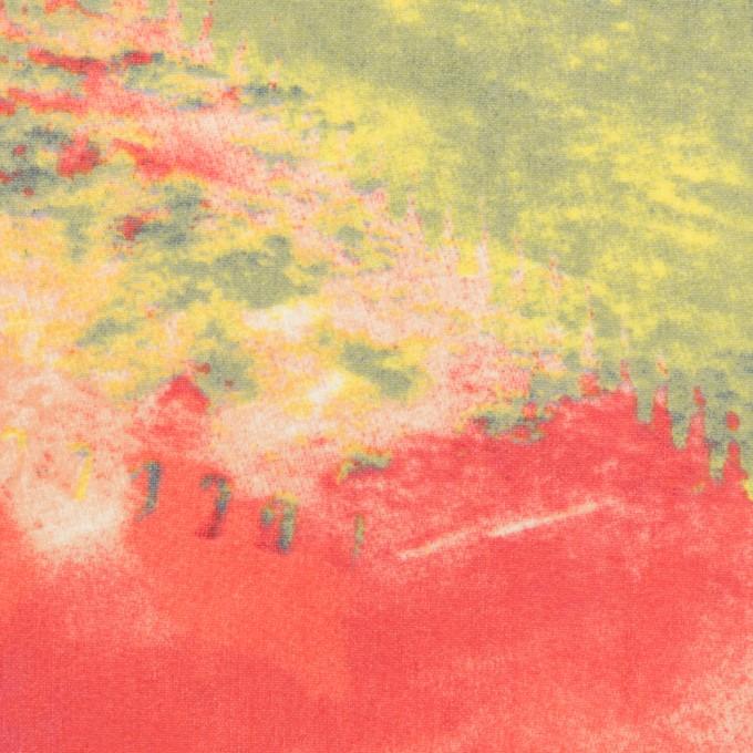 ポリエステル×ペイント(マルチ)×ジョーゼット イメージ1