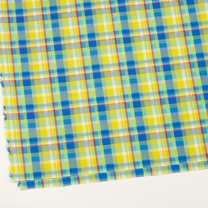 コットン×チェック(シトロン&ブルー)×ブロード イメージ2