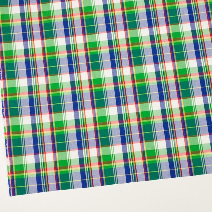 コットン×チェック(グリーン&グレープ)×ブロード イメージ2