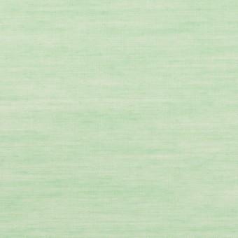 コットン&レーヨン×無地(グリーン)×ボイル
