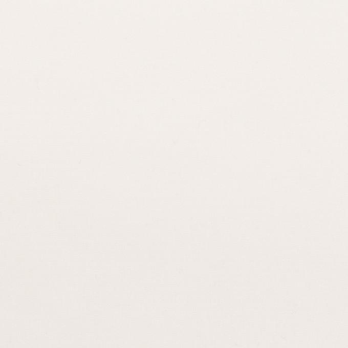 ポリエステル×無地(ホワイト)×オーガンジー_全4色 イメージ1
