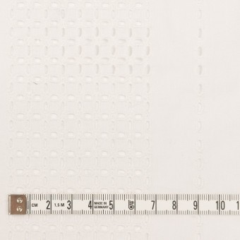 コットン×ストライプ(オフホワイト)×ローン刺繍_全2色 サムネイル4
