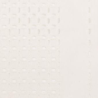 コットン×ストライプ(オフホワイト)×ローン刺繍_全2色
