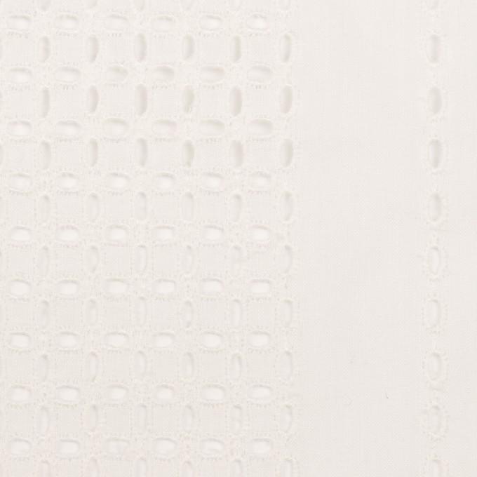 コットン×ストライプ(オフホワイト)×ローン刺繍_全2色 イメージ1