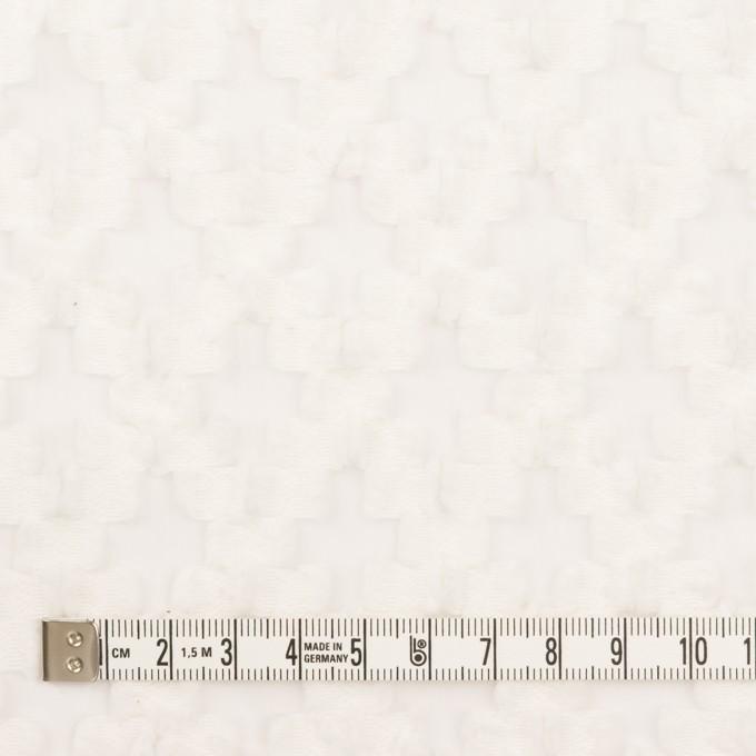 コットン&ナイロン×幾何学模様(オフホワイト)×オーガンジー・カットジャガード イメージ4