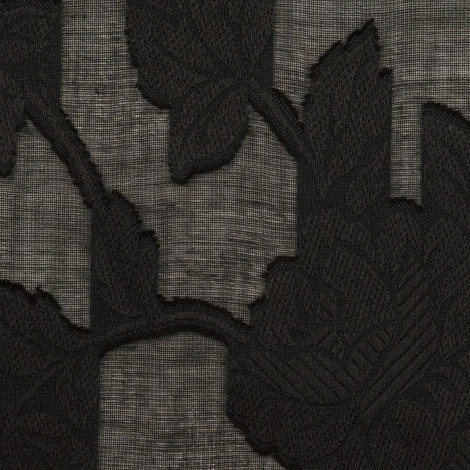 コットン×フラワー(ブラック)×ボイルカットジャガード イメージ1