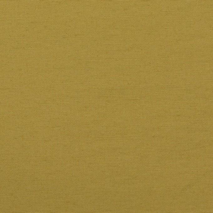 コットン&ナイロン×無地(ローリエ)×タッサーポプリン イメージ1