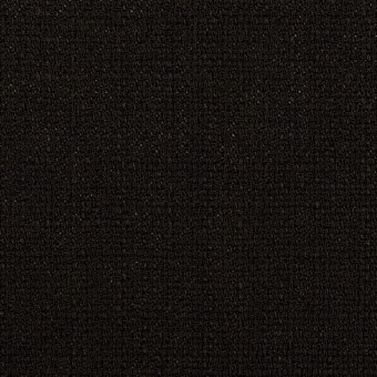 ポリエステル×無地(ブラック)×かわり織