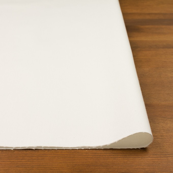 コットン×無地(オフホワイト)×セルビッチ・カツラギ イメージ3