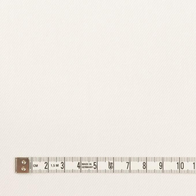 コットン×無地(オフホワイト)×セルビッチ・カツラギ イメージ4